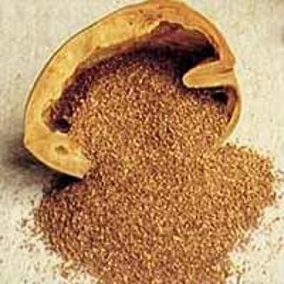 crushed walnut powder